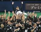 日本のプロ野球のクライマックスシリーズに賛成